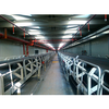 Two-way Environmental belt conveyor system