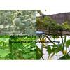 plant support net&mesh pea&bean net&mesh plastic netting wire mesh(factory)