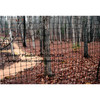 deer fence net&mesh plastic fencing net&mesh  plastic fence mesh fencing mesh screen plastic mesh netting (factory)