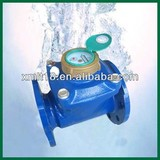 Removable woltman water meter