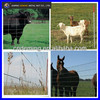 Galvanized Grassland Fence/Field Fence/Cattle Fence (Gold supplier/Manufacturer/ISO9001)