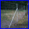 Galvanized Grassland Fence/Field Fence/Cattle Fence (China supplier/Manufacturer/ISO9001)
