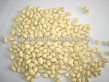 Chinese shandong blanched peanut kernels
