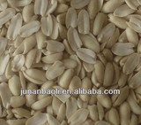 Chinese blanched peanut kernel split