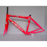 RB-NT11 carbon frame 48CM road bike frame with decal peony flower (pink)