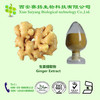 Pure Natural Factory Supply Ginger Extract