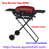 Portable Gas Grill Foldable BBQ