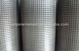 Welded Wire Mesh (ANPING XINPEI MEITAL WIREM ENSH