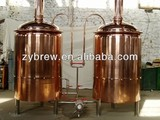 beer equipment with different capacity for sale