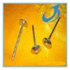 Galvanized Roofing Iron Nail