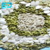 New Crop Shine Skin Pumpkin Seed Kernels for high quality