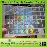 customized 3D master globe hologram stickers manufacturer