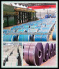 Good quality of (GI/HDG) Galvanized Steel Coils/hot dip galvanized steel sheet(DX51D+Z)