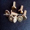 The best selling products free sample Book Binding Screw