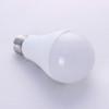 High lumens 2450lm 21W equivalent 150W A65 LED lamp