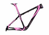 Er29 Carbon Frame/Monocoque Frame with Disc Brake /Bike Frame (JXYM002)