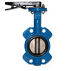 cast iron ANSI  Butterfly Valve (TBD-002) /Butterfly Valves/Types of Valves