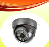 Dome Camera (GSA-DVI30)