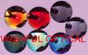 Cr39 1.499 Sunglasses Lens (Revo color) (71mm/73mm/75mm/80mm)