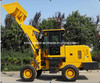 Zl20 Multi Function Mini Wheel Loader with Bucket (CE)