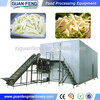 frozen french fries machinery / IQF Quick Freezer Machine