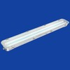 CIP Stainless Steel & Steel Waterproof Fluorescent Fitting