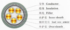 XLPE  insulated  Steel wire armored PVC  sheathed  power  cables