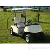 2 seat electric golf cart with adumbral curtain