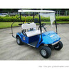 2+2 seat  electric golf cart vehicle with adumbral curtain