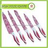 5PCS Hot Sale Non Stick Knifes Set Kitchen Tool