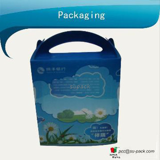 Printing PVC packaging box for toys with handle
