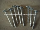 roofing nails/screw thread roofing nails