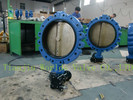 A536 DUCTILE IRON FULL LUG BUTTERFLY VALVE