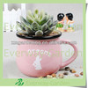 Pink Colour Drinking Pot Shape Planter