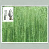 Top Grade white willow bark extract salicin 98%