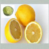High quality Natural Diosmetin 98% powder CAS No.: 520-34-3