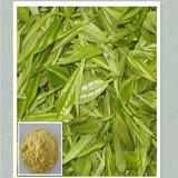 100% green tea extract (-)-Epigallocatechin gallate 95%