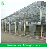 professional glass greenhouse supplies in China