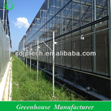 green house covering material,tempered glass and float glass greenhouse cover