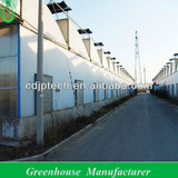 uv treated plastic film greenhouse with drip irrigation for leaf vegetables