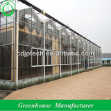 venlo glass greenhouses for agriculture use