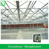 glass greenhouse cooling fan and pad