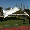 Idea stretch tent for outdoor romantic event party