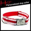 Adjustable Personalised Name Nylon Dog Collar