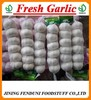China Dry Garlic ( Eu quality, supply all the year)