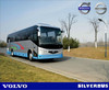 SILVERBUS 700i 11M new luxury city bus