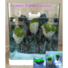 avatar pumice stone aquarium decor
