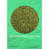 AAA grade 95%/90%/70% green raisin ,chinese raisin with best quality