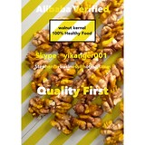 Walnut Kernels Suppliers Wholesalers