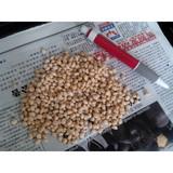 yunnan pine nuts